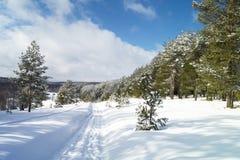 Paesaggio rurale in inverno Immagini Stock