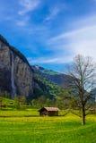 Paesaggio rurale in Lauterbrunnen, Svizzera Immagine Stock