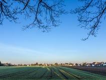 Paesaggio rurale a Monaco di Baviera con il nuovo stabilimento Immagine Stock Libera da Diritti