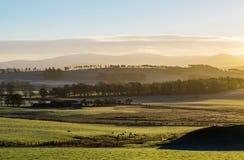 Paesaggio rurale nebbioso degli altopiani alla luce di alba Immagine Stock