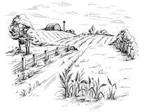 Paesaggio rurale nello stile grafico Fotografia Stock