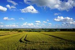 Paesaggio rurale, nuvole bianche, cielo blu Immagini Stock Libere da Diritti
