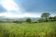 Paesaggio rurale pittoresco Fotografia Stock Libera da Diritti
