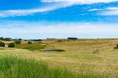 Paesaggio rurale pittoresco del campo con le balle e lo stagno della paglia fotografia stock