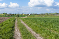 Paesaggio rurale Polonia orientale Fotografie Stock