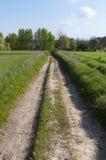 Paesaggio rurale Polonia orientale Fotografie Stock Libere da Diritti