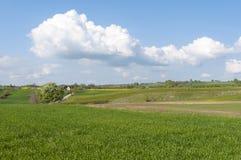 Paesaggio rurale Polonia orientale Immagine Stock