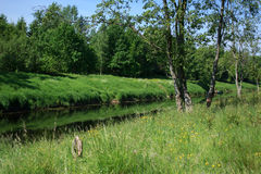 Paesaggio rurale russo immagine stock libera da diritti