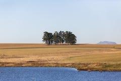 Paesaggio rurale scenico Fotografie Stock Libere da Diritti