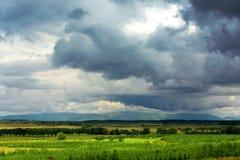 Paesaggio rurale scozzese Immagine Stock