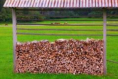 Paesaggio rurale, Slovenia Immagine Stock Libera da Diritti