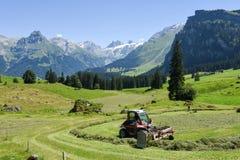 Paesaggio rurale sopra Engelberg sulle alpi svizzere Fotografie Stock Libere da Diritti