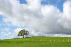 Paesaggio rurale tempestoso immagine stock