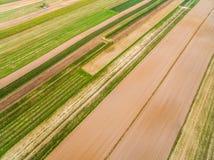 Paesaggio rurale - terreno coltivabile visto dalla vista dell'occhio del ` s dell'uccello Bande variopinte e linee Immagini Stock Libere da Diritti