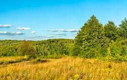 Paesaggio rurale tipico della regione di Kursk, Russia fotografie stock