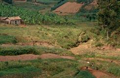 Paesaggio rurale, Uganda Fotografie Stock Libere da Diritti