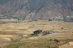 Paesaggio rurale variopinto del ` s del Bhutan Fotografie Stock