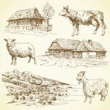 Paesaggio rurale, villaggio, animali da allevamento royalty illustrazione gratis