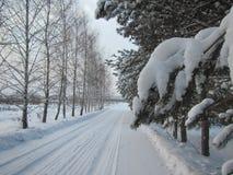 Paesaggio russo di inverno con neve Immagini Stock