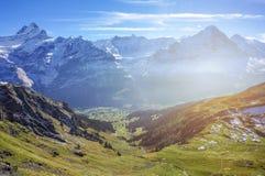 Paesaggio sbalorditivo delle montagne dell'alpe dell'erba verde con lustro w del sole Fotografie Stock