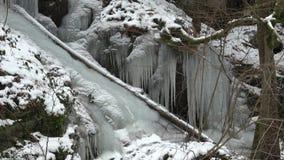 Paesaggio sbalorditivo di inverno archivi video