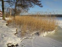 Paesaggio scandinavo di inverno Fotografie Stock