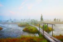 Paesaggio scenico Immagine Stock