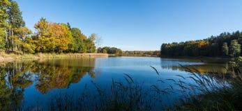 Paesaggio scenico con la vista dello stagno nella foresta di autunno Immagine Stock
