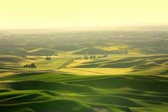 Paesaggio scenico dalla collina di Steptoe fotografie stock libere da diritti