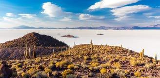 Paesaggio scenico dei cactus di Salar De Uyuni delle montagne enormi delle isole Fotografia Stock Libera da Diritti