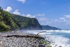 Paesaggio scenico dell'oceano in Dominica con le onde enormi fotografie stock