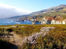 Paesaggio scenico della California Fotografia Stock Libera da Diritti