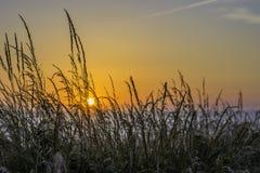 Paesaggio scenico della costa di Pembrokeshire, Regno Unito immagini stock libere da diritti