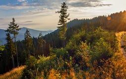 Paesaggio scenico della montagna al tramonto Immagine Stock