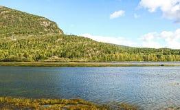 Paesaggio scenico della Norvegia in una luce del giorno con il fiume, la foresta e le pietre nella parte anteriore della vista fotografie stock libere da diritti