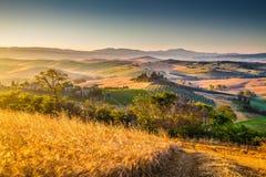 Paesaggio scenico della Toscana ad alba, dOrcia di Val, Italia Fotografia Stock Libera da Diritti