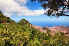 Paesaggio scenico della valle della montagna Immagine Stock