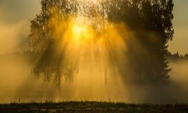 Paesaggio scenico di alba immagini stock