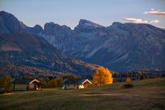 Paesaggio scenico di autunno nelle montagne con il larice giallo backlighted, Alpe di Siusi, alpi della dolomia, Italia Fotografie Stock Libere da Diritti