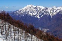 Paesaggio scenico di bello del cielo blu inverno caucasico nevoso della montagna con gli alberi nudi sulla priorità alta Immagine Stock