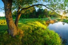 Paesaggio scenico di estate immagini stock