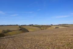 Paesaggio scenico di inverno dei wolds di Yorkshire Immagine Stock