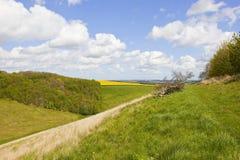 Paesaggio scenico di primavera Immagine Stock Libera da Diritti