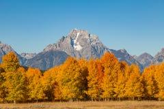 Paesaggio scenico di Teton nella caduta Fotografie Stock