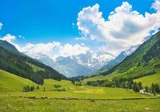 Paesaggio scenico nelle alpi a Salisburgo, Austria Immagine Stock Libera da Diritti