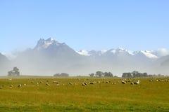 Paesaggio scenico in NZ Fotografia Stock