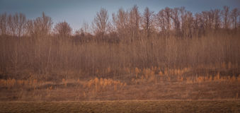 Paesaggio scenico vicino a Edwardsville Illinois Fotografie Stock