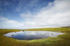 Paesaggio scozzese della linea costiera in isole Shetland scotland Il Regno Unito Fotografie Stock Libere da Diritti