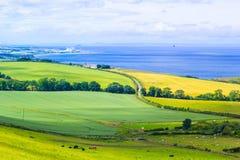 Paesaggio scozzese di estate, Lothians orientale, Scozia, Regno Unito Immagine Stock