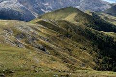 Paesaggio selvaggio nell'area di alta montagna/alp de siusi/verso sud Tirolo Fotografia Stock Libera da Diritti